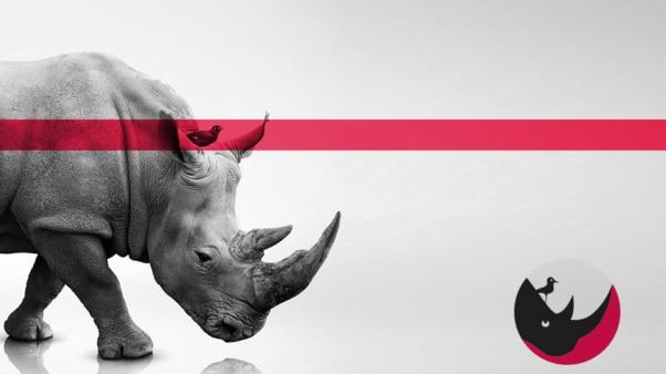 Agence Offensive Studio - L'Expérience Digitale