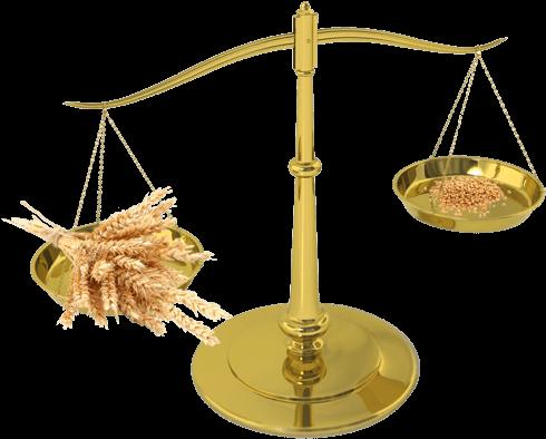 offensive-site-internet-responsive-terresa-avocats-01