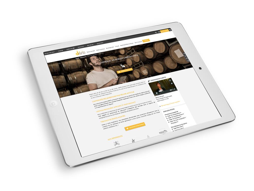 DEFIS-site-internet-responsive-tablette-mobile-bordeaux